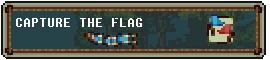 capture the flag.jpg