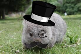 Dapper Wombat.png