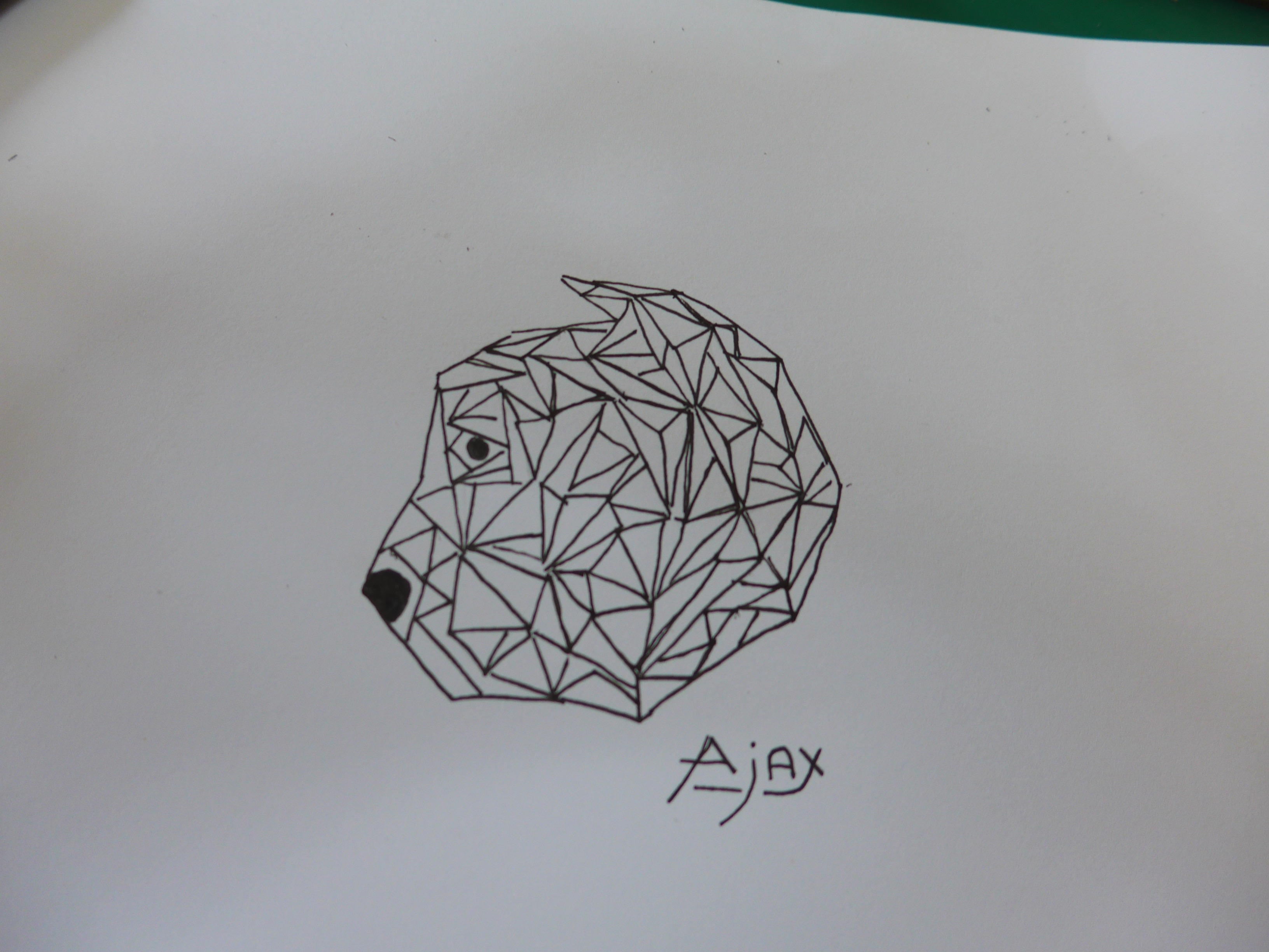 P1050038.jpg